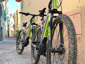 Bike Giant Fathom E+ 2019 gallery